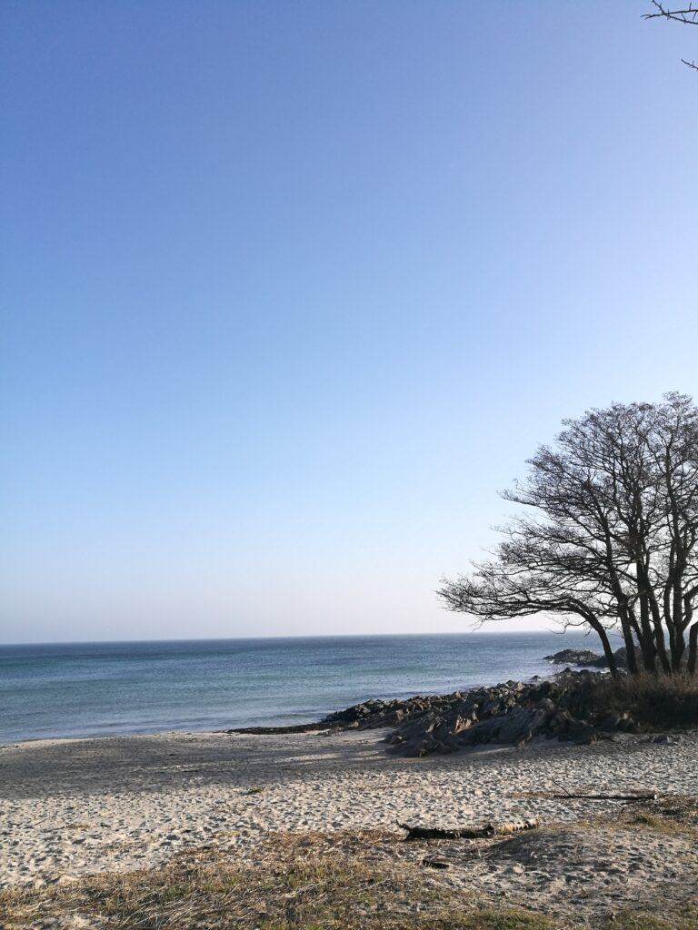 Sandkaas strand er en lille perle, der ligger på stien mellem Allinge og Tejn. Fantastisk rute, hvis man vil gå i naturen.