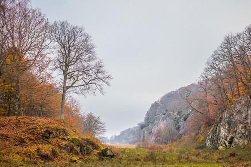 Smukt efterårslandskab i en af Danmarks største skove, Almindingen. Her ses Ekkodalen.